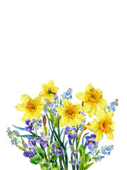 Bouquet of violets, forget-me-nots and daffolias. Spring flowers. Watercolor.