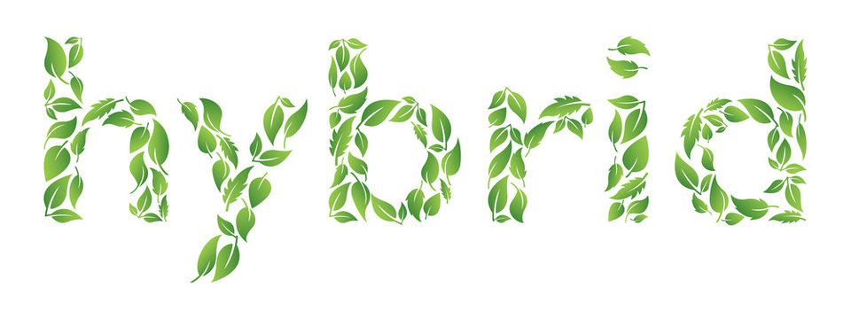 Hybrid text made from leaves. Environmental concept. Isolated background.