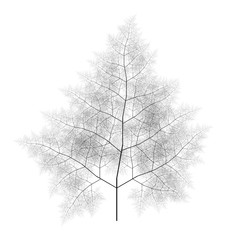 Flat  Computer Generated Self-Similar L-system Branching Tree Fractal  - Generative Art