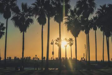 Venice Beach Sunset, Los Angeles California