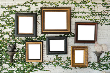 Empty picture frames on the wall with ivy wall crawler
