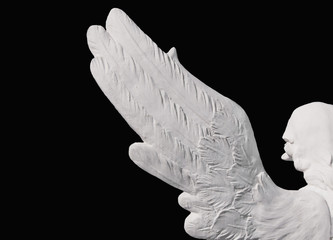 Angel's wings Black background. Isolated