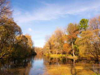 river in an autumn park