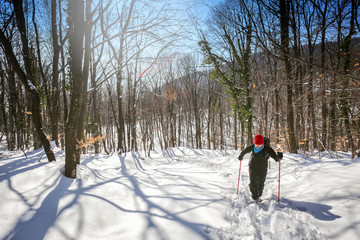 Hiker walking in the forest on the hill covered with fresh deep snow.