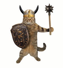 The cat in a viking helmet holds a mace and a shield. White background.