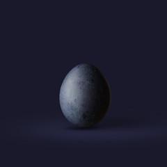 Dark blue easter egg isolated on dark background