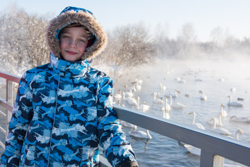Boy at winter nonfreezing lake with white whooping swans. The place of wintering of swans, Altay, Siberia, Russia.