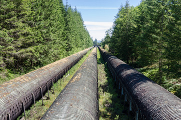 Huge Water Pipes through a Forest to a Hydroelectric Plant on a Sunny Summer Day