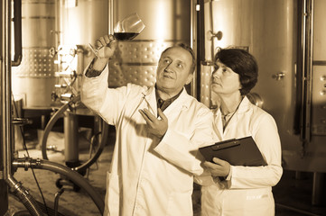 Two experts in winery