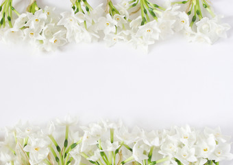 Spring styled stock photo. Easter concept. Feminine desktop scene. Frame of narcissus, daffodil flowers on white table background. Empty space. Flat lay, top view.