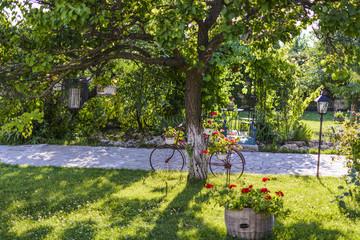 decorative bike under a tree with flower pot .