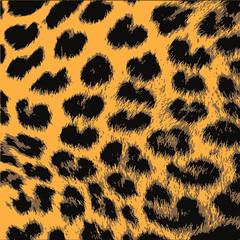 Leopard Animal Skin Pattern