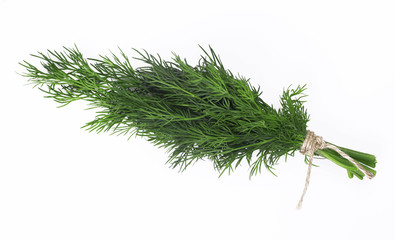 A bunch of fresh dill tied with a rope isolated on a white background