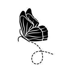 silhouette nice butterfly insect animal flying