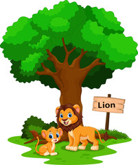 Funny lion under a shady tree with a sign the identity
