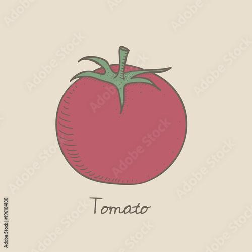 Illustration of tomato icon