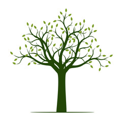 Green Tree with Leaves. Vector Illustration and graphic element.