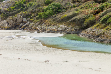 Close of an European forest hill and rocks on a estuary sea inlet with clear water and white sand