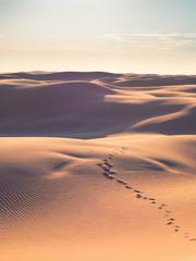 Footsteps on empty desert.