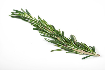 Fresh green sprigs of rosemary isolated on a white background