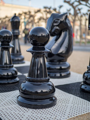 Pawn and knight chess pieces in giant chess set
