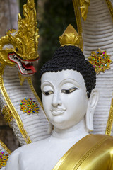 Buddha statue in the temple on island Koh Phangan, Thailand.