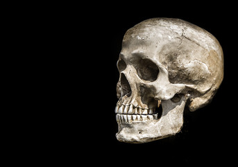 human scull on black isolate show history of human