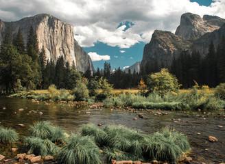 El Capitan rises high above the Yosemite Valley Floor, a popular spot for climbers