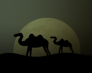 Camel in the desert. Twilight and moon. Vector illustration.