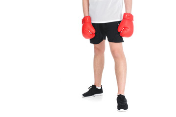 Wall Mural - Cropped image of young sportsman in boxing gloves isolated on white