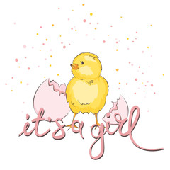 Newborn baby card -- it's a girl / Vector illustration, banner with chick