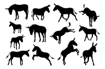 Donkey Animal Silhouettes Set