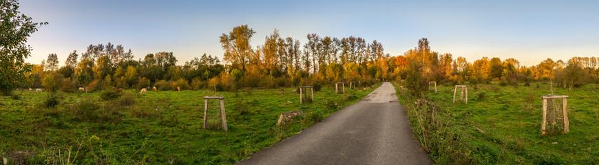 Naturpark Bislicher Insel bei Xanten im Herbst
