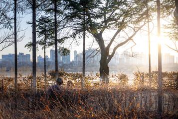 View of the Seonyudo Park in Seoul, South Korea