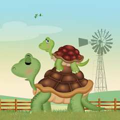 illustration of nice turtles in the farm