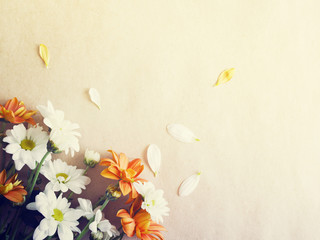White and orange flowers of a chrysanthemum on a paper, top view, copy space. Spring flower background