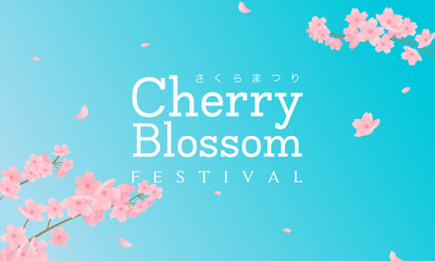 Wall Mural - Cherry Blossom Festival (In Japanese character) vector illustration. Sakura branch with petals falling and blue sky background.