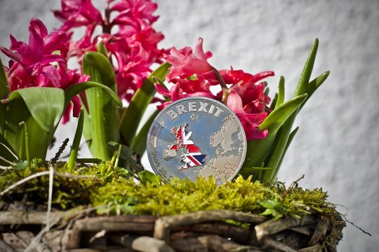 Brexit coin with a flag