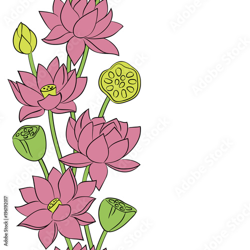 quotvector color pink lotus flower seamless vertical pattern