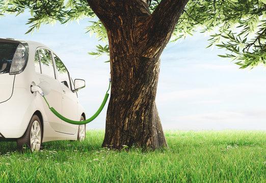 Automobile elettrica in carica con albero, sostenibilità