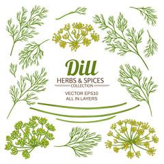 dill plant elements vector set