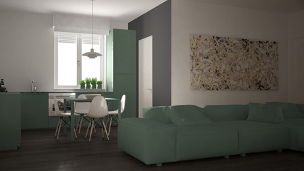 Modern living room with kitchen in a cozy open space apartment, white and green architecture interior design