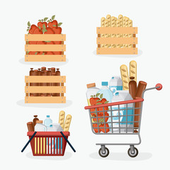 supermarket colorful set with shelf and baskets and shopping cart with foods and drinks vector illustration