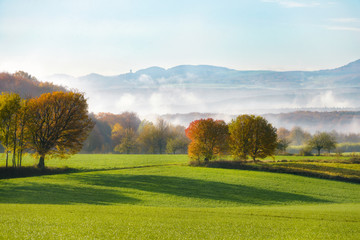 Fields and trees in autumn, early morning mist arose from the Rhine valley, Westerwald, view onto the hills of the Eifel
