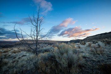 Oregon Desert Sunrise Madras Deschutes River Cascades Sage Brush