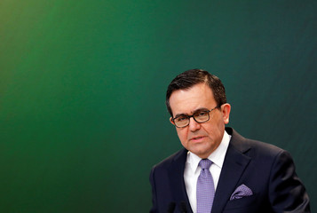 Mexico's Economy Minister Ildefonso Guajardo holds a news conference in Mexico City