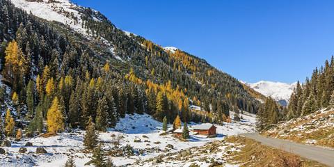 Bergwald mit Fichten und Lärchen im Dischmatal bei Davos in Graubünden, Schweiz. Im Herbst nach Schneefall.