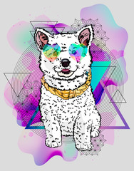 Ð¡ool youth print with dog and geometry elements. Hipster vector poster. Cool print.