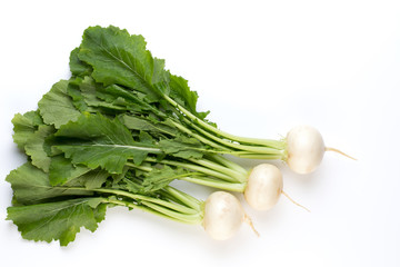 Fresh white round turnip radish on white background.