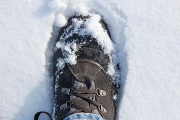 man leg in hiking boots in fresh snow